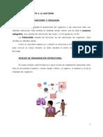 ANATOMIA RADIOLÓGICA (Manual del Curso).pdf