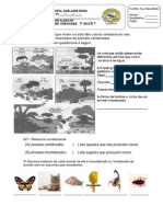 5 prova de ciencias.pdf