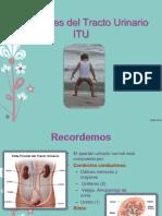 Infecciones del Tracto Urinario y Respiratorias.pptx