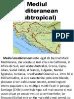 Mediul mediteranean.pptx