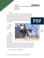 Estética-Schaeffer.pdf