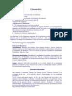 Citoesqueleto.doc