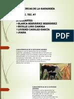 Presentación1 ganaderia.pptx