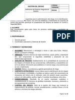 P - HSE-SC - 01 Procedimiento de gestión del riesgo.docx