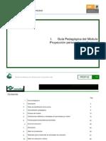 Guiasproyeccionpersonalprofesio.pdf