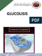 PPT Glucolisis.pptx