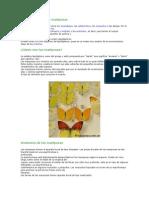 Clasificación de las mariposas.doc