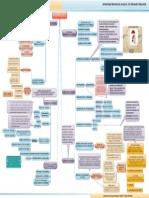 CURRICULUM-MAPA CONCEPTUAL.pdf