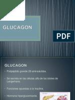 GLUCAGON.pptx