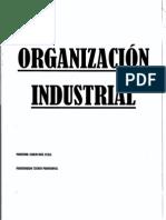 ORGANIZACION INDUSTRIAL.pdf