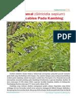Daun-Gamal-Obat-Scabies-Pa.pdf
