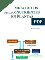 6. valle grande dinamica de LOS micronutrientes en plantas valle.pdf