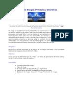 Gestión de riesgos. Principios y directrices.doc