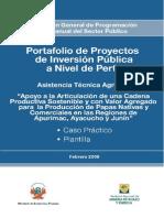 ASISTENCIA TECNICA AGRICOLA - CASO PRACTICO Y PLANTILLA.doc