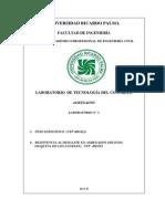 3.- Guia de  PE Y RD 2013-II.docx