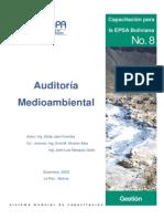 AUDITORIA AMBIENTAL BOLIVIA.pdf