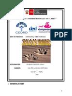 Plan de negocio artesania22[1].doc