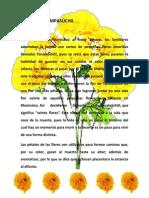 LA FLOR DE CEMPASÚCHIL.docx