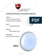 PRACTICA Nº4. medios del cultivo docx.docx