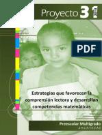 P-31 PREESCOLAR.pdf