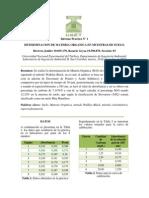 Informe_1_M.O_J&G.docx