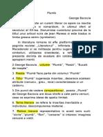 Plumb - Schita Comentariu(1)