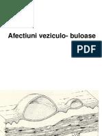 Afectiuni veziculo-buloase