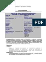 GUIA DEL PROYECTO FINAL DE PRÁCTICA DISEÑO PRODUCCIÓN.pdf