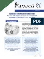 FORMASOL Panacú.pdf