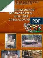 Comercializacion de cacao.pdf