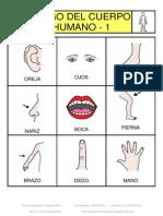 Bingo pictos el cuerpo CLASIF.pdf