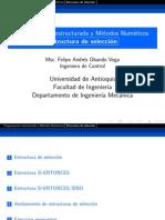 Estructura_seleccion.pdf