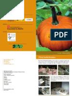 Los_Frutos.pdf