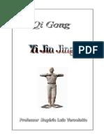yijin.pdf