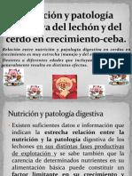 TRASTORNOS NUCTRICIONALES.pptx