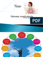 Sistema respiratorio1.ppt