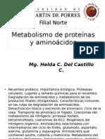 FMH_CHI_2014_Metabolismo de proteínas y aminoácidos.ppt