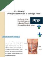Formacion_de_orina.pptx