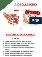 SISTEMA-CIRCULATÓRIO-2013.pdf