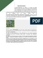 ERAS GEOLÓGICAS DEL PERÚ.docx