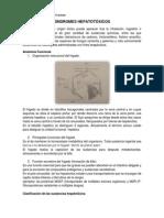 SÍNDROMES HEPATOTÓXICOS documento.docx