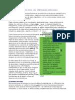 El laboratorio clínico y las enfermedades profesionales.doc