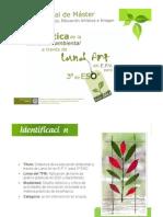 Presentación TFM.pdf