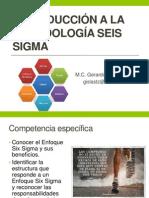 METODOLOGIA SEIS SIGMA.pptx