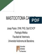 Mastocitomas.pdf