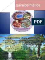 Teoría quimiosintética.pptx