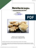 Las Maravillas del Jengibre - Grandes Beneficios para La Salud.pdf