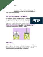 propiedades de los gases.docx