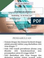 Demam Berdarah Dengue Anak