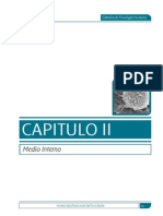 cap 2 medio interno.pdf
